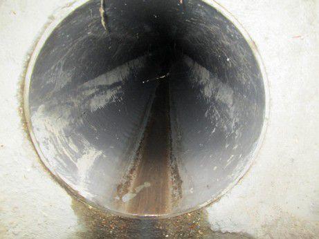 JOURNEE MONDIALE DE L'ENVIRONNEMENT